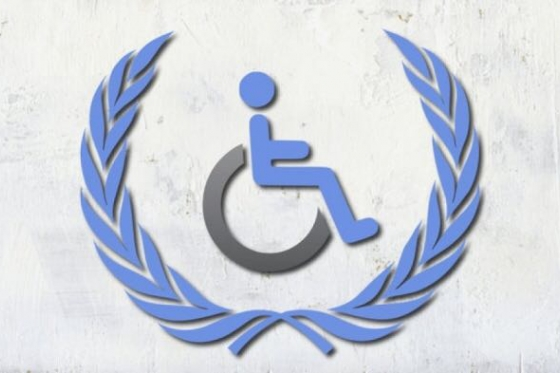 Consultation of the UN Committee on the Rights of People with Disabilities was held